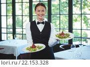 Купить «Smiling waitress holding plates», фото № 22153328, снято 23 ноября 2015 г. (c) Wavebreak Media / Фотобанк Лори