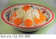 Купить «Овощной салат в миске», эксклюзивное фото № 22161900, снято 3 января 2014 г. (c) lana1501 / Фотобанк Лори