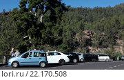 Купить «Парковка на дороге TF-21 рядом с вековой сосной. Деревня Вилафлор, Тенерифе, Канарские острова, Испания», видеоролик № 22170508, снято 28 января 2016 г. (c) Кекяляйнен Андрей / Фотобанк Лори