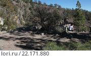 Купить «Туристы отдыхают в тени. Пешая тропа к Лунному пейзажу. Тенерифе, Канарские острова. Испания», видеоролик № 22171880, снято 28 января 2016 г. (c) Кекяляйнен Андрей / Фотобанк Лори