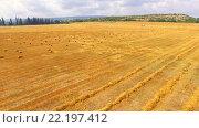 Купить «Уборка пшеницы, полет над полем», видеоролик № 22197412, снято 19 февраля 2016 г. (c) Владимир Кравченко / Фотобанк Лори