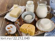 Купить «Dairy products on a wooden background», фото № 22212040, снято 2 февраля 2016 г. (c) Tatjana Baibakova / Фотобанк Лори