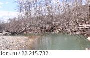 Купить «Лесная река с захламленным берегом павшими деревьями», видеоролик № 22215732, снято 14 февраля 2016 г. (c) Олег Хархан / Фотобанк Лори