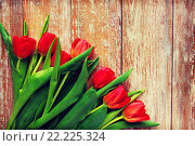 Купить «close up of red tulips on wooden background», фото № 22225324, снято 3 марта 2015 г. (c) Syda Productions / Фотобанк Лори