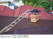 Купить «Деревянная лестница на металлической двускатной крыше рядом с кирпичной трубой», фото № 22227852, снято 18 августа 2015 г. (c) Александр Замараев / Фотобанк Лори