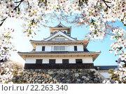 Купить «Image of beautiful sakura seasnon in Kyoto, Japan», фото № 22263340, снято 23 апреля 2018 г. (c) PantherMedia / Фотобанк Лори