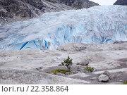Ледник Нигардсбреен (2011 год). Стоковое фото, фотограф Ольга Морозова / Фотобанк Лори