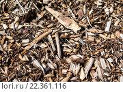 Древесные опилки. Стоковое фото, фотограф Евгения Миллер / Фотобанк Лори