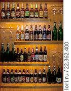 Купить «Различные сорта чешского пива в бутылках на витрине», эксклюзивное фото № 22362400, снято 23 июля 2019 г. (c) Svet / Фотобанк Лори