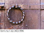 Купить «Ручка-кольцо на старой двери», фото № 22363996, снято 26 марта 2016 г. (c) Зезелина Марина / Фотобанк Лори