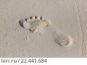 Купить «human footprint on beach sand», фото № 22441684, снято 11 февраля 2016 г. (c) Syda Productions / Фотобанк Лори