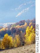 Купить «Golden autumn in mountain.», фото № 22457200, снято 5 ноября 2015 г. (c) Юрий Брыкайло / Фотобанк Лори