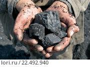 Купить «Уголь в руках шахтера», фото № 22492940, снято 3 августа 2005 г. (c) Вячеслав Светличный / Фотобанк Лори