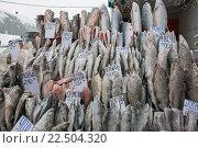 Купить «Северная мороженая рыба на базаре в Воркуте», фото № 22504320, снято 25 января 2015 г. (c) Михаил Трибой / Фотобанк Лори