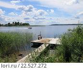 Летний день на озере. Стоковое фото, фотограф Дарья Петрова / Фотобанк Лори