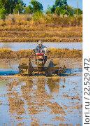 Vietnamese farmer prepares drowned field to sow rice (2016 год). Стоковое фото, фотограф Александр Подшивалов / Фотобанк Лори