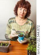 Купить «Пенсионерка занимается рассадой дома», фото № 22544872, снято 3 апреля 2016 г. (c) Акиньшин Владимир / Фотобанк Лори
