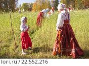 Праздник хлеба. Жатва (2015 год). Редакционное фото, фотограф Олег Велигданов / Фотобанк Лори