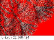 Купить «Пуховый платок. Фрагмент.», эксклюзивное фото № 22568424, снято 21 марта 2016 г. (c) Blekcat / Фотобанк Лори