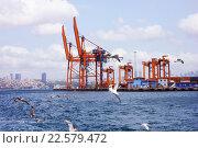 Чайки на фоне портовых сооружений в проливе Босфор. Стамбул, Турция (2015 год). Редакционное фото, фотограф Наталья Данченко / Фотобанк Лори