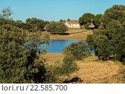 Paraje de Los Pozuelos and pond, Almansa, Albacete province, Spain. Стоковое фото, фотограф Antonio Real / age Fotostock / Фотобанк Лори