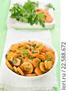 Купить «Морковный салат с зеленью», фото № 22588672, снято 21 октября 2015 г. (c) Татьяна Волгутова / Фотобанк Лори
