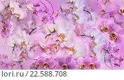 Фон из цветов орхидей фаленопсис. Стоковое фото, фотограф Екатерина Голубкова / Фотобанк Лори