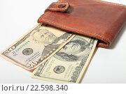 Купить «Сто пятьдесят долларов в кошельке», эксклюзивное фото № 22598340, снято 15 апреля 2016 г. (c) Яна Королёва / Фотобанк Лори