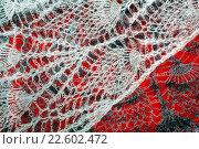 Купить «Пуховый платок. Фрагмент», эксклюзивное фото № 22602472, снято 27 марта 2016 г. (c) Blekcat / Фотобанк Лори