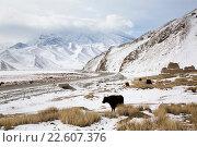 Купить «Вид на гору Мустаг-ата, Каракорумское шоссе и старое киргизское кладбище в высокогорьях Памира, Синьцзян-Уйгурский автономный район, Китай», фото № 22607376, снято 20 марта 2016 г. (c) Николай Винокуров / Фотобанк Лори