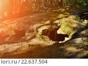 Купить «Мегалитические сооружения на территории острова Вера на Южном Урале», фото № 22637504, снято 13 августа 2009 г. (c) Зезелина Марина / Фотобанк Лори