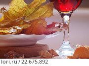 Осенний натюрморт с листьями и ракушками. Стоковое фото, фотограф Наталья Саратова / Фотобанк Лори