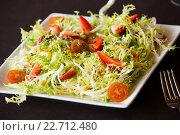 Купить «green salad served», фото № 22712480, снято 19 октября 2018 г. (c) Яков Филимонов / Фотобанк Лори
