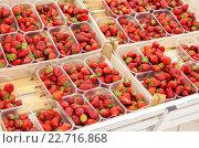 Купить «Fresh red strawberries arranged in baskets ready for sale at the supermarket», фото № 22716868, снято 23 июля 2019 г. (c) FotograFF / Фотобанк Лори