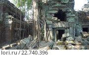 Купить «Храм Та Пром в Ангкор-Ват, Сием Рип, Камбоджа», видеоролик № 22740396, снято 28 апреля 2016 г. (c) Михаил Коханчиков / Фотобанк Лори