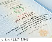 Купить «Внутренняя страница красного диплома с отличием», эксклюзивное фото № 22741848, снято 30 апреля 2016 г. (c) Игорь Низов / Фотобанк Лори