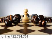 Купить «Белая шахматная пешка стоит в окружении поверженных черных пешек», фото № 22784764, снято 31 января 2016 г. (c) Рамиль Гибадуллин / Фотобанк Лори