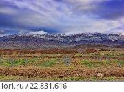 Кавказские горы в весенний день. Стоковое фото, фотограф Александр Овчинников / Фотобанк Лори