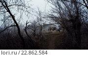 Купить «Линии электропередачи», видеоролик № 22862584, снято 10 марта 2015 г. (c) Потийко Сергей / Фотобанк Лори