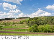 Зеленое поле с голубым небом и облаками. Стоковое фото, фотограф Dmytro Kohut / Фотобанк Лори