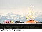 """Купить «Вечный огонь. Мемориал """"Защитникам советского заполярья в годы войны""""», фото № 22916624, снято 9 апреля 2016 г. (c) Ирина Здаронок / Фотобанк Лори"""