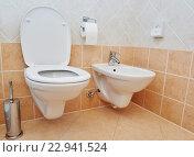 Купить «toilet sanitary sink or bowl bidet and paper», фото № 22941524, снято 20 июля 2015 г. (c) Дмитрий Калиновский / Фотобанк Лори