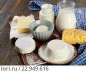 Купить «Fresh Dairy products», фото № 22949616, снято 2 февраля 2016 г. (c) Tatjana Baibakova / Фотобанк Лори