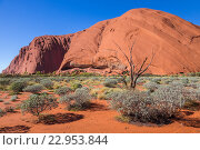 Гора Улуру (Uluru), известный австралийский ориентир. Святыня аборигенов, фото № 22953844, снято 4 апреля 2016 г. (c) Александр Трофимов / Фотобанк Лори