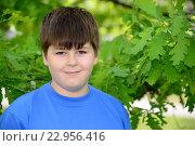 Купить «Portrait of boy of about 12 years in Oak Park», фото № 22956416, снято 15 мая 2016 г. (c) Володина Ольга / Фотобанк Лори