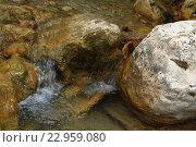 Река в камнях. Стоковое фото, фотограф Надежда Шапкина / Фотобанк Лори