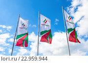 """Флаги нефтяной компании """"Татнефть"""" на фоне неба, фото № 22959944, снято 22 мая 2016 г. (c) FotograFF / Фотобанк Лори"""