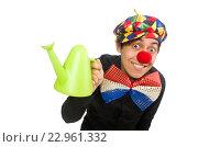 Купить «Funny clown with flowers isolated on white», фото № 22961332, снято 22 января 2015 г. (c) Elnur / Фотобанк Лори