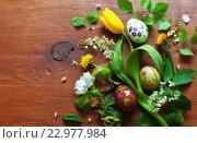 Купить «Весенний фон. Раскрашенные к Пасхе яйца и распустившиеся первые весенние цветы на деревянном фоне», фото № 22977984, снято 20 мая 2016 г. (c) Виктория Катьянова / Фотобанк Лори