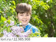 Купить «Portrait of boy in park with blooming lilacs», фото № 22985908, снято 15 мая 2016 г. (c) Володина Ольга / Фотобанк Лори